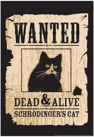 Schrodinger's Cat Poster at AllPosters.com