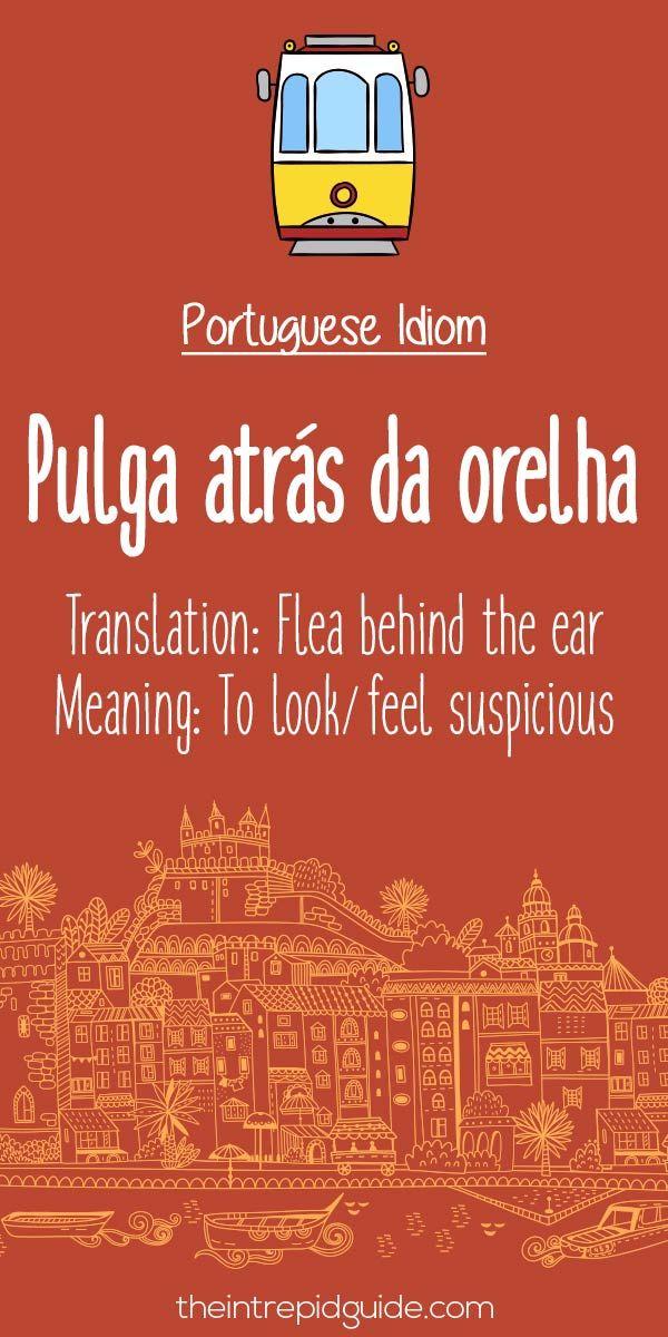 Portuguese phrases Pulga atras da orelha