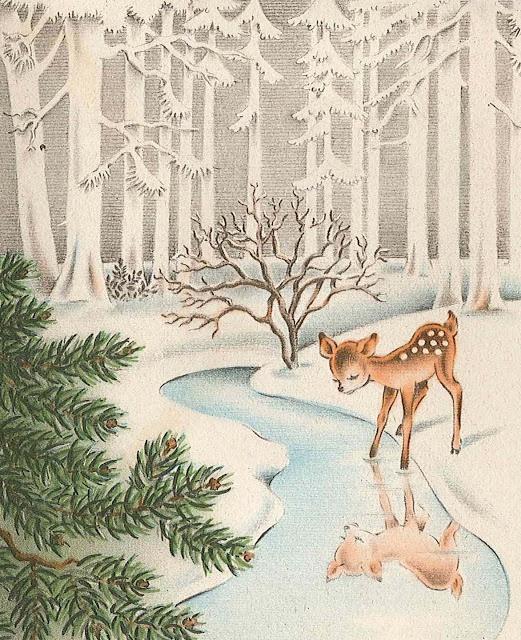 amb neu