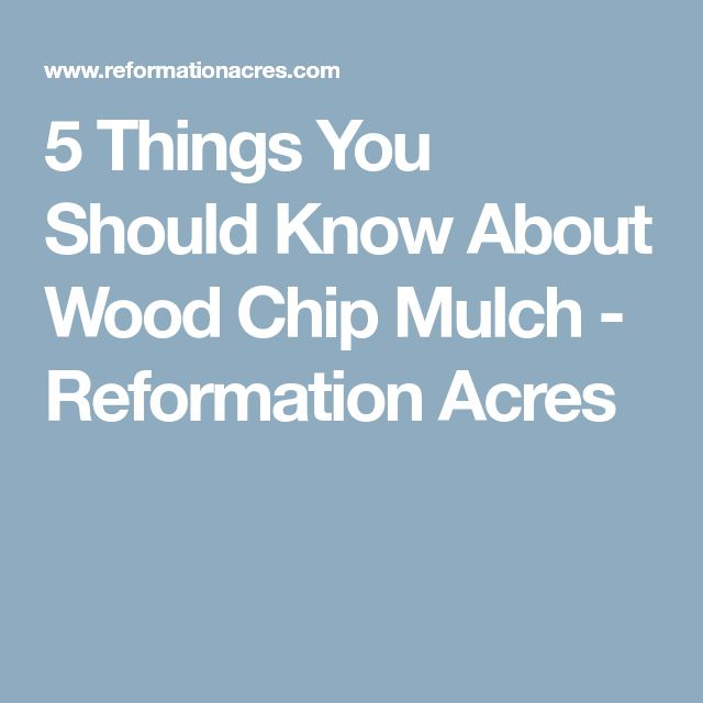 5 Things You Should Know About Wood Chip Mulch - Reformation Acres