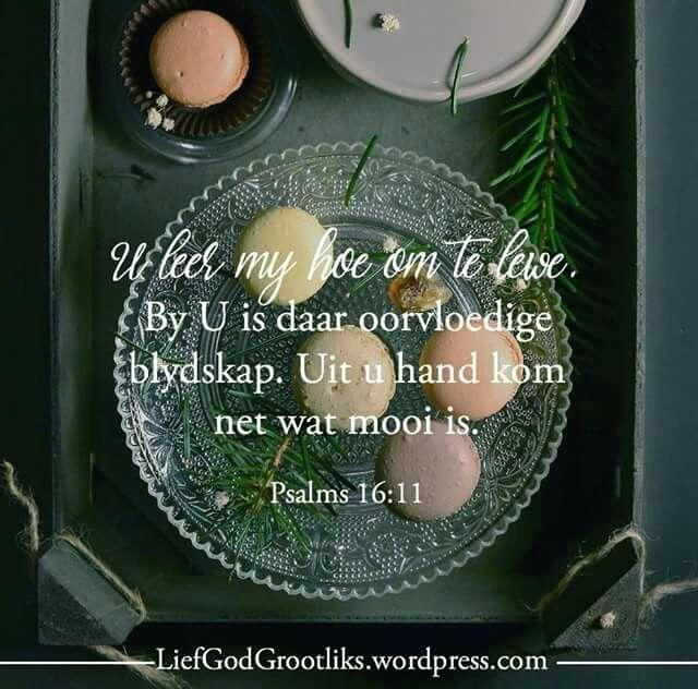 Psalms 16:11 U leer my hoe om te lewe. By U is daar oorvloedige blydskap. Uit u hand kom net wat mooi is.  Voel jy vandag leeg? Neem tyd saam met Hom sodat Hy jou kan vul met die vreugde wat net gevind kan word in Sy teenwoordigheid. Hy is dieselfde gister, vandag en tot in ewigheid. #LiefGodGrootliks –