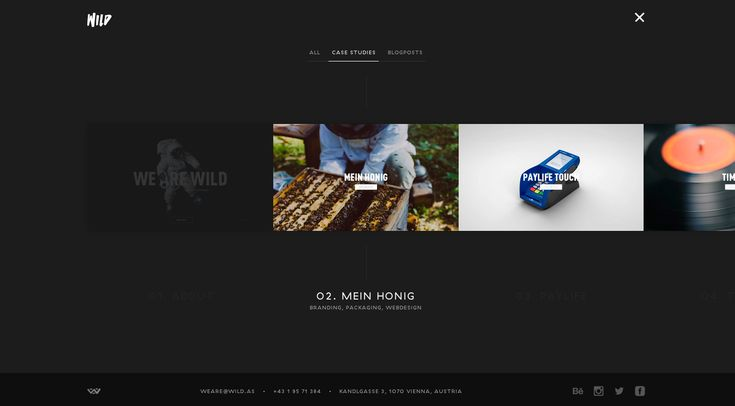 WILD - Site of the Day July 07 2014