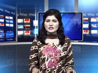 Hina Rabbani Khar and his father Rabbani Khar will join PTI in next week