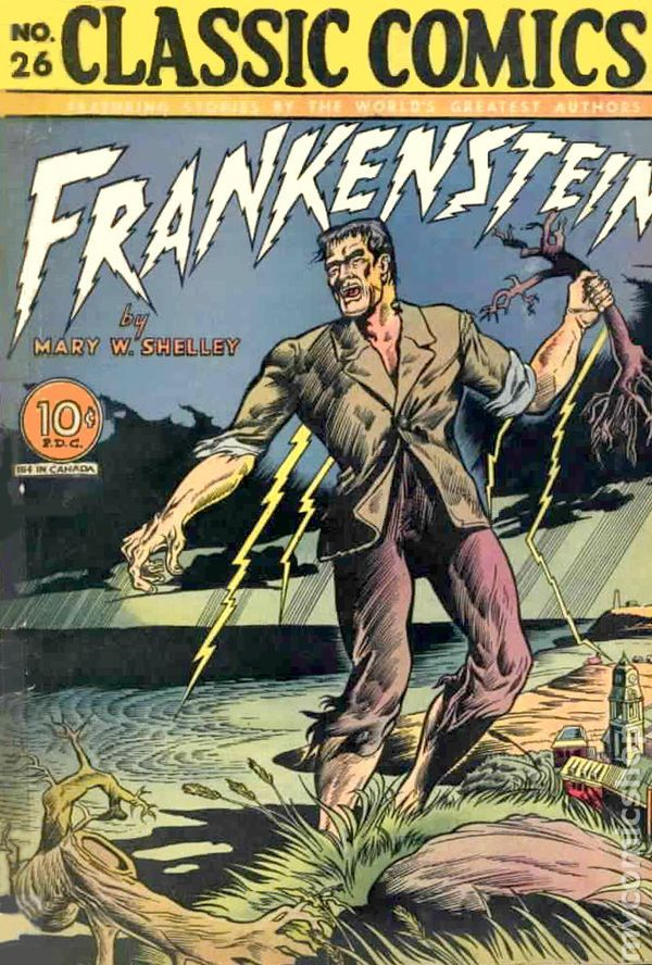 "frankenstein as a non epistolary film essay If so, what conditions must exist, or not exist, in order for it to flourish how important are human connections to a full and satisfying life to explore these questions, pair the shelley novel with the 1980 david lynch movie ""the elephant man"" (and the times's movie review) the film, based on real-life."