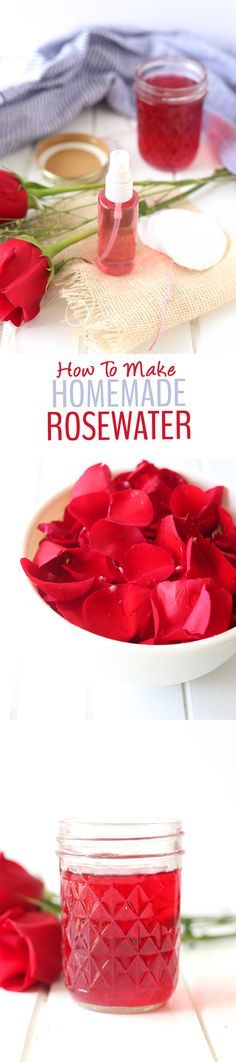 A step-by-step tutorial on how to make homemade rosewater + a recipe for DIY Rosewater Face Toner! You'll learn all of the benfits of rosewater for your skin too.