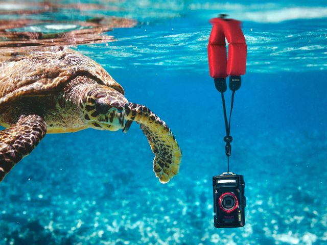 The Olympus Strap Float keeps waterproof cameras from quickly sinking to the bottom. Gentle positive buoyancy of strap allows taking of underwater pictures. GetdatGadget.com/olympus-strap-float-keeps-camera-afloat/