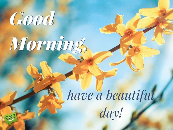 Good Morning, have a beautiful day.