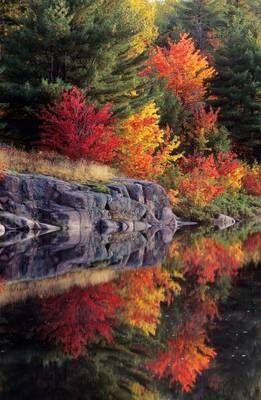 Killarney Provincial Park, Ontario  Fall Colour