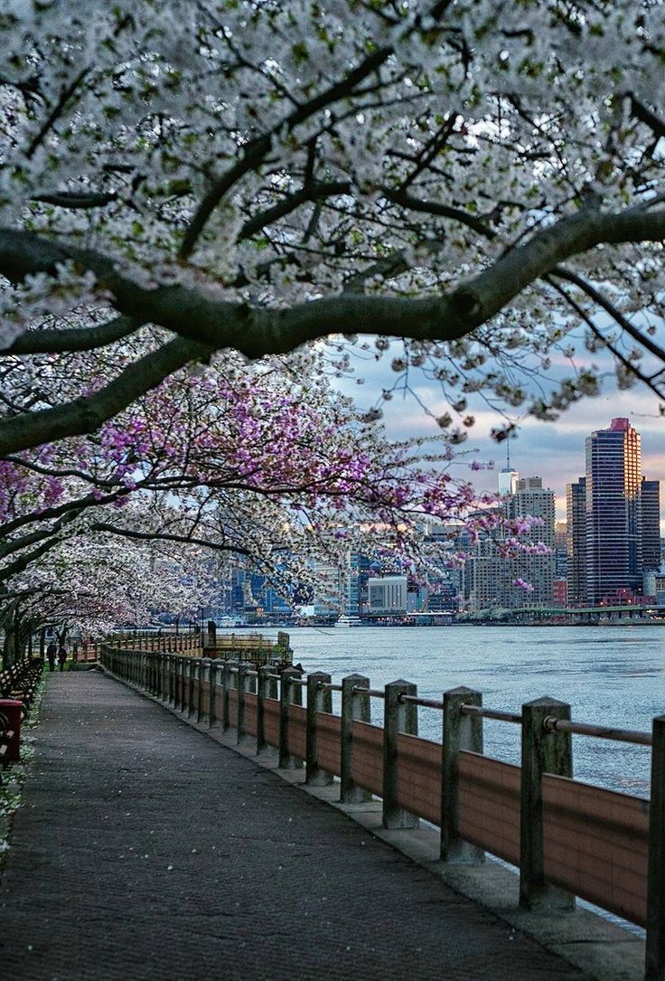 We're dreaming of spring in NYC!