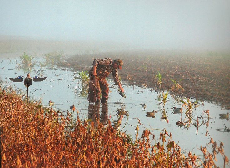 Waterfowl Hunting- Finest waterfowl hunting available for Ducks ...