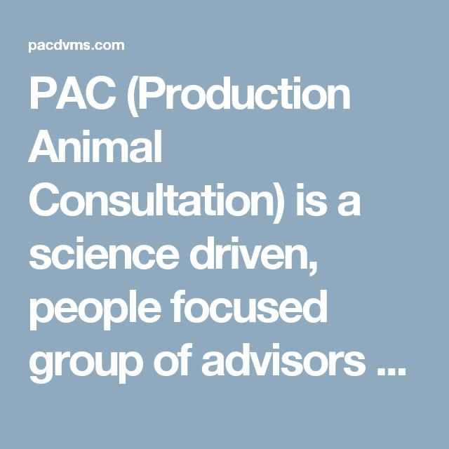 PAC (Production Animal Consultation) is a science driven, people focused group of advisors serving animal protein producers worldwide. Our unique and diverse set of talents and skills allow us to provide services to the food chain across all the major protein producing species. We work to improve throughput, efficiency, and operating expenses from conception to consumption. Subscribe to our newsletter...