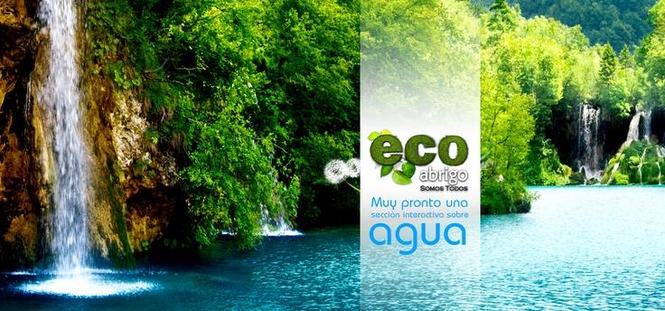 Muy pronto en EcoAbrigo.