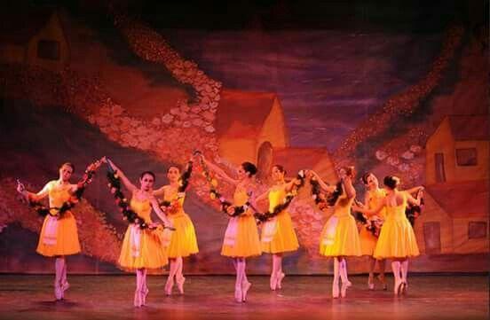 #ballet #dança