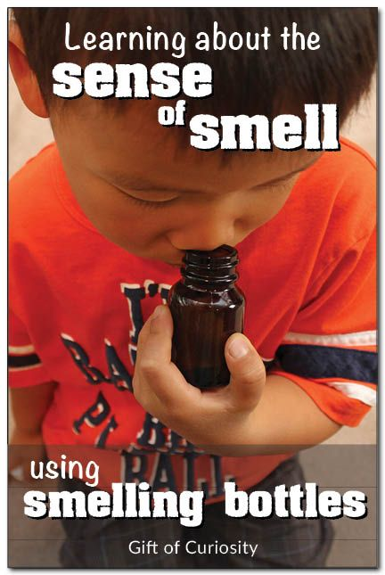 Sense of smell: Matching smells with smelling bottles.  Math and Science!