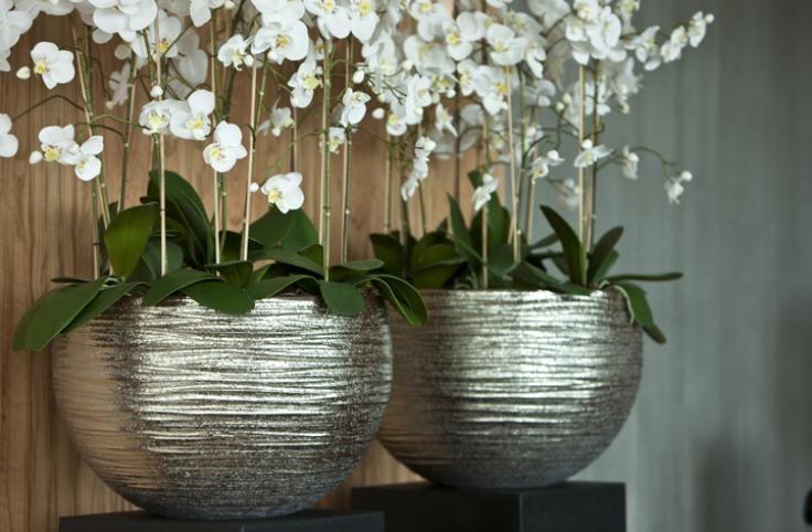 26 best wof r braucht mann sockel images on pinterest pedestal display design and. Black Bedroom Furniture Sets. Home Design Ideas