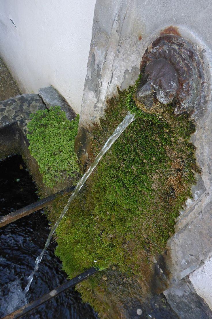 #Staatspark #Fürstenlager #Brunnen #Löwenbrunnen #Wasserspeier #Gartendenkmalpflege #Bensheim #HessischeWeinstraße #b_lau