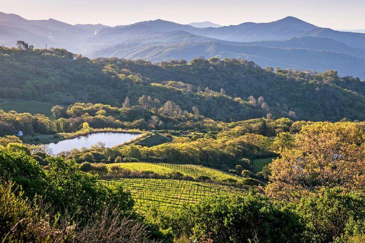 A Weekend in Wine Country Hot Spot Healdsburg, California