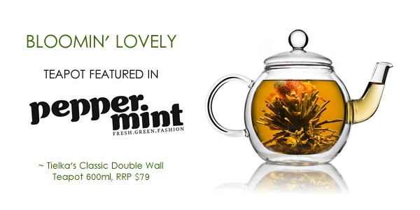 Classic Double Wall Glass Teapot with glass infuser and coil filter