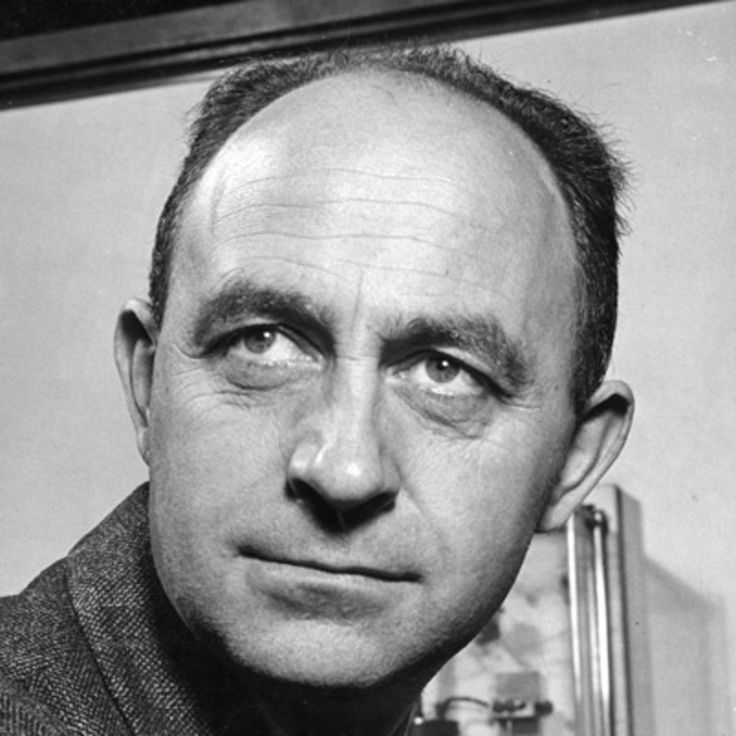 Physicist Enrico Fermi built the prototype of a nuclear reactor and worked on the Manhattan Project to develop the first atomic bomb.