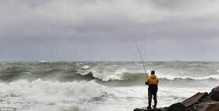 Image result for surfcast far north, ninety mile,images