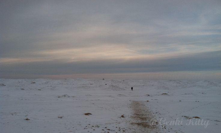 Frozen Lake Michigan 2015