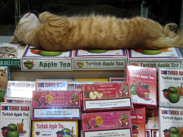 apple tea guard ;-) Istanbul