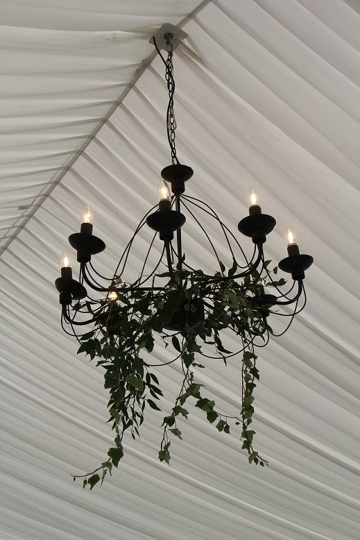 Hanging foliage - Marquee wedding at Cromwell http://www.wanakaweddingflowers.co.nz/