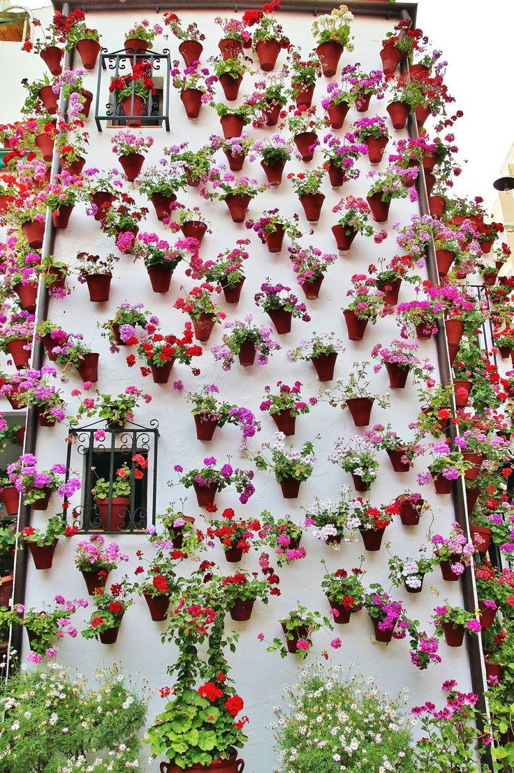 La Fiesta de Los Patios de Cordoba,, Spain, May, 2013