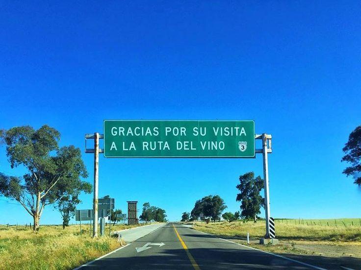 Gracias por su visita a La Ruta Del Vino ¡Buen viaje!  #Ensenada #MiAlmaGemela #Baja #BC #BajaCalifornia #DiscoverBaja #DescubreBC #EnjoyBaja #DisfrutaBC #Summer #Verano #Wine #Vino #México #Ruta Inicia tu aventura visitando: www.descubreensenada.mx  Aventura por princesacavazos