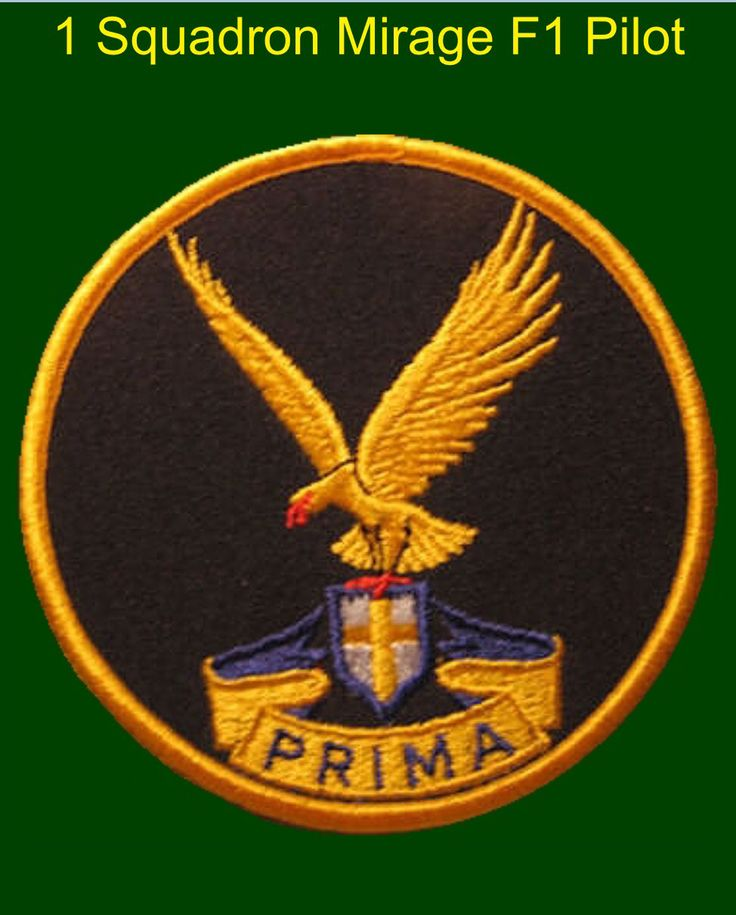 1 Squadron, South African Air Force, Squadron patch.