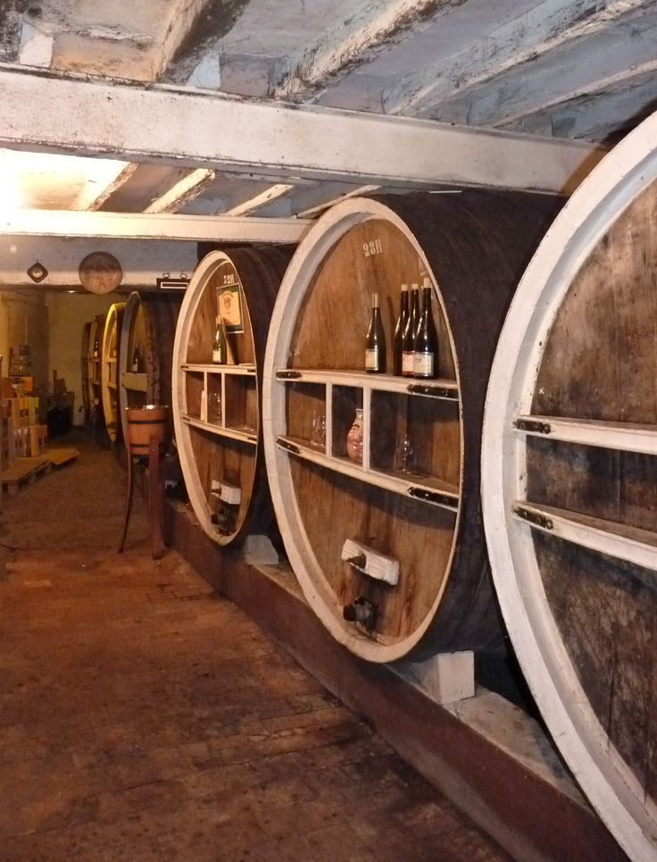 Enjoy a visit in a winery and discover wines of the Loire Valley... Coteaux du Layon (sweet wines), Cabernet d'Anjou (rosé), Quarts de Chaume (sweet)... among others! Some of the wineries offer visits in English. #oenotourisme #vinsdeloire #jaimelanjou #loirepower #loirelayon