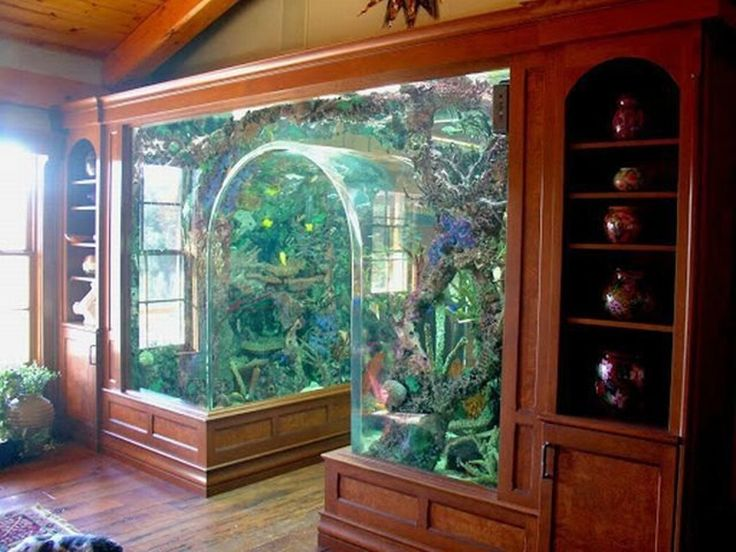 14+ Best Aquarium Furniture Idea To Design Your Home