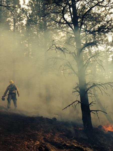 Burning lungs Photo by Benjamin Winkler -- National Geographic Your Shot