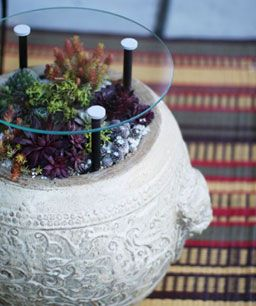 outdoor container plant & side table - I need to make this!