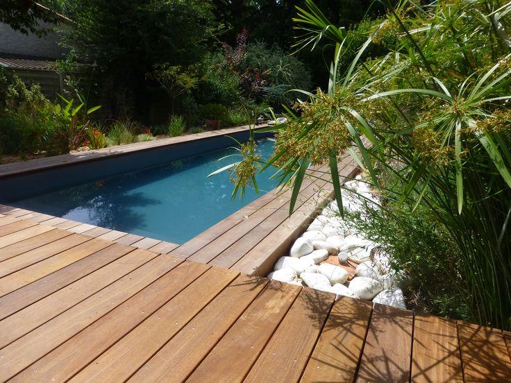 Piscine en longueur mise en valeur par une terrasse en bois exotique. Les papyrus et autres plantes vertes apportent un coté jungle à ce jardin paysager.