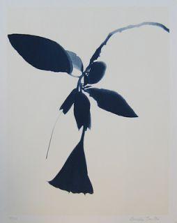 Galeria dos Prazeres: Algumas das obras expostas na Galeria dos Prazeres da conceituada artista plástica Lourdes Castro