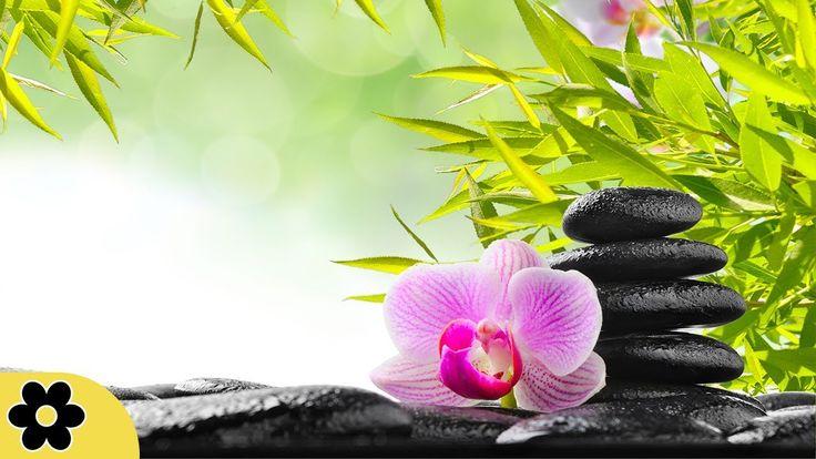 Zen Music, Relaxing Music, Calming Music, Stress Relief Music, Peaceful ...