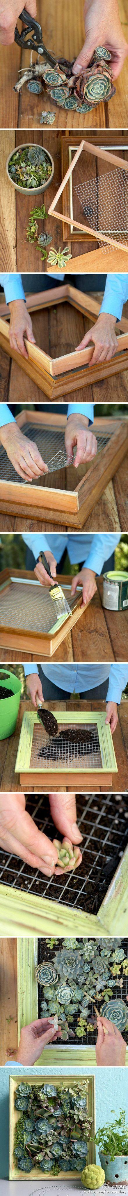 Olivilla-Olivilla: DIY:Deco con plantas. Algunas ideas para poner en tu casa