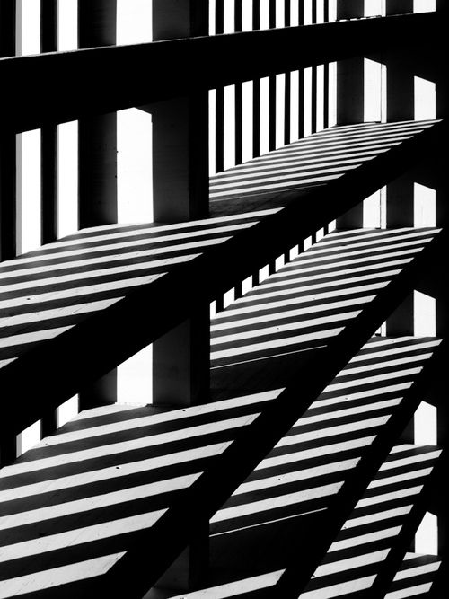 Nature Lights, Lights Shadows, Colors Texture, Shadows Shelf, Black Whit, White Photos, Beautiful Photography, Architecture Design, Zebras