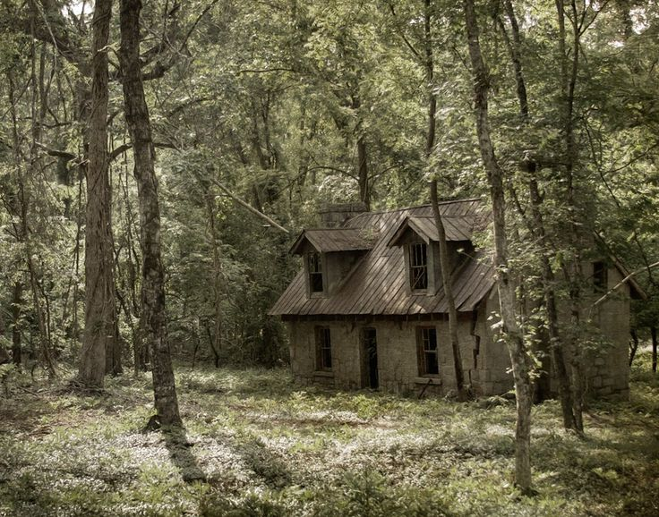 Witch house old houses and fairytale on pinterest - The house in the woods ...