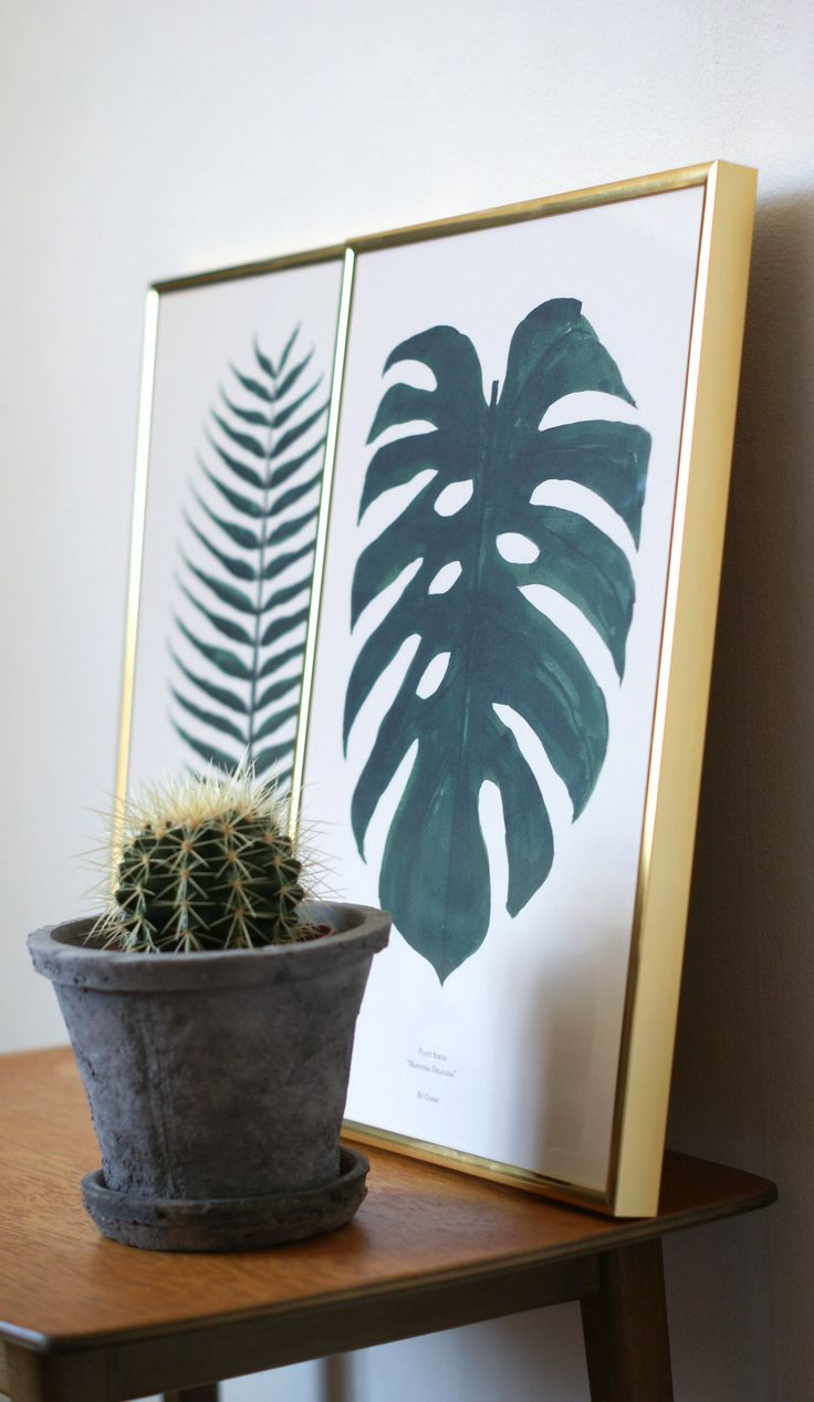 Cocos og Monstera Plant print in a green universe   Picture by: Julie Mænnchen