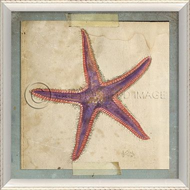 Starfish Art 6. Let the artwork do the talking inside your home! Be sure to see all of our Starfish print options by Kolene Spicher. Group in twos, threes or fours for added impact. Frame as shown. Fr