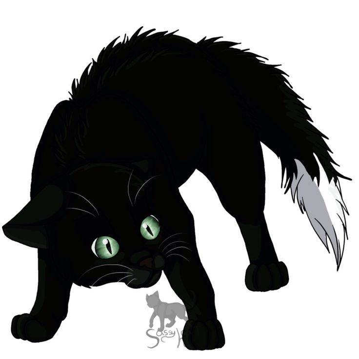 Warrior Cats Dead: Well I Was Reading Warriors The Ultimate Guide And When