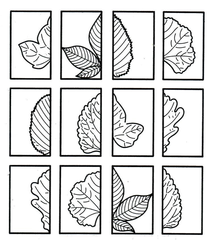 Plaats de halve bladeren terug bij elkaar tot een heel blad, kleur in. Je kan ook aandacht besteden aan de rand van de bladeren.