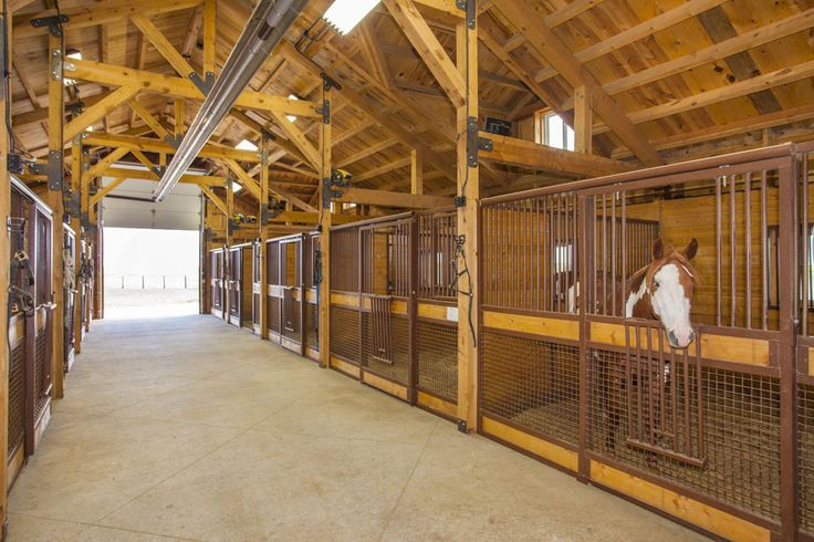 298 best horse stall ideas images on pinterest dream for 2 stall horse barn kits