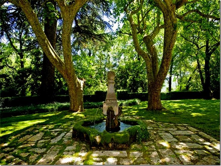 shady fountain courtyard