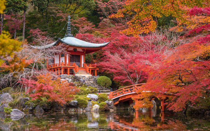 Best 25 World Most Beautiful Place Ideas On Pinterest Beautiful Places To Live World 39 S Most
