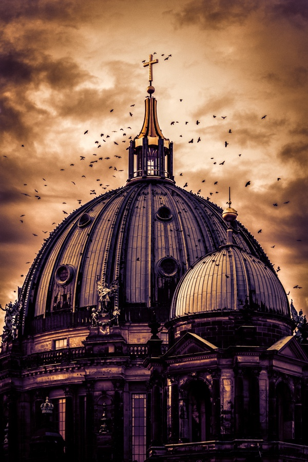 The Birds - Berliner Dom, Germany