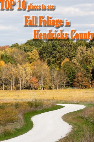 Top 10 Places To See Fall Foliage In Hendricks County Central Indiana Fall Fun Pinterest