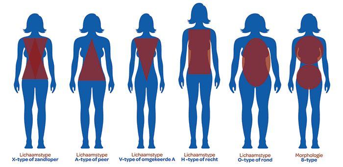 De zes vrouwelijke lichaamstypes